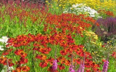 Gardens, gardens, gardens…